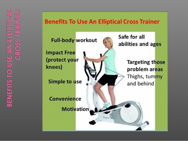 Elliptical Machine Reviews >> Muscles Worked in Elliptical Training